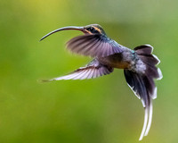 Quick change of direction